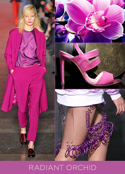 Spring 2014 Color Trend Radiant Orchid