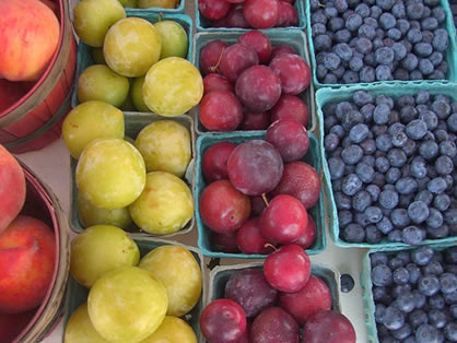 Why You Should Shop at the Farmer's Market