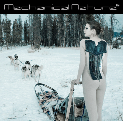 mechanical_nature_top_image_1301882391.jpg