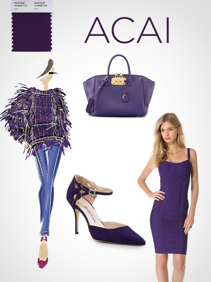 Pantone Fall Color Report: Acai