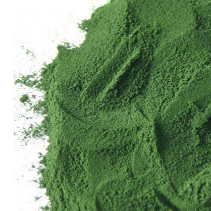 Superfood Spirulina for Sun Protection