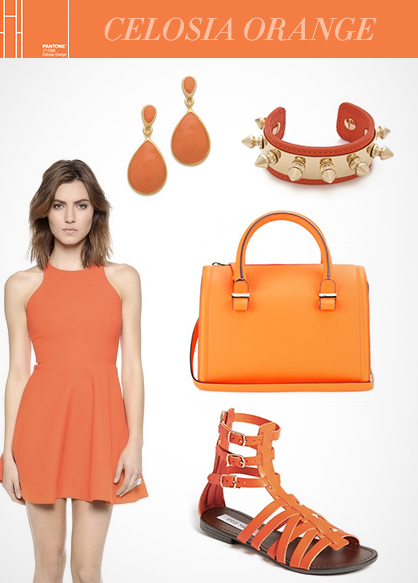 Spring 2014 Color Trend: Celosia Orange