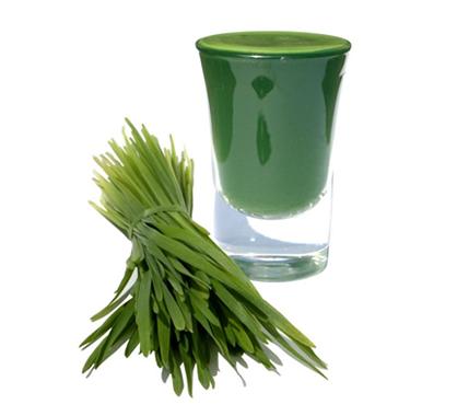 Ease a Hangover with Wheatgrass