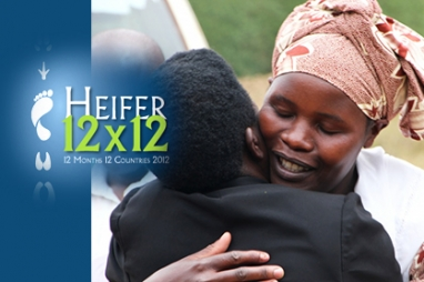 Heifer 12x12: 12 months, 12 countries in 2012