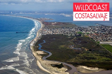 WiLDCOAST: protecting coastal ecosystems and wildlife