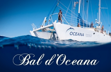 Charity on the high seas: Bal d'Oceana in Monaco