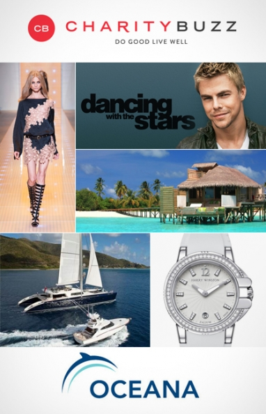 Oceana SeaChange 2013: 5 Luxury Auction Items
