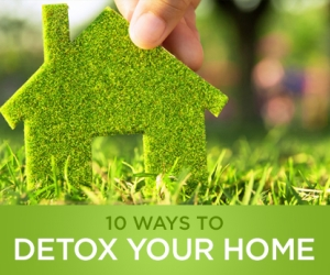 Wellness Wednesday: 10 Ways to Detox Your Home
