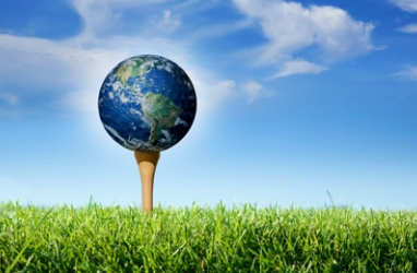 Save Trees Use Eco-Friendly Golf Tees