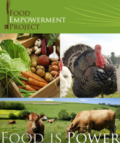 Food Empowerment Project: Healthy Food, Healthy Communities