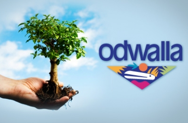 LUX Nation:  Help Plant 100,000 Trees with Odwalla & US State Parks