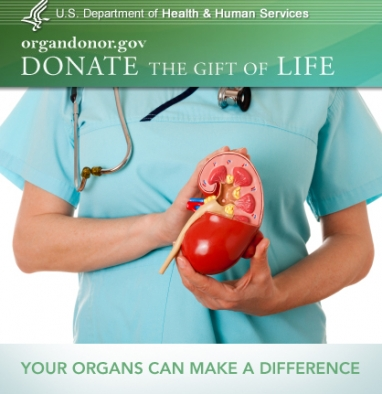 National Donor Day: Donating organs saves lives