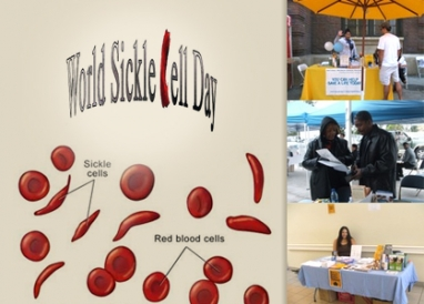 Honoring World Sickle Cell Day: Myths and truths about sickle cell