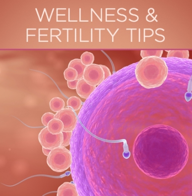 The Link Between Wellness and Fertility