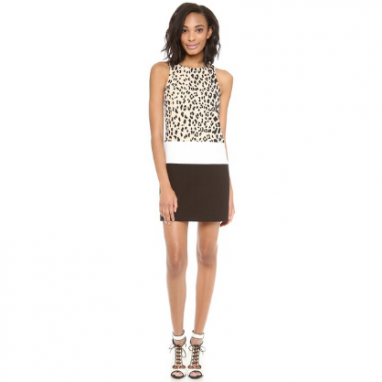 Fashionable Leopard Dress